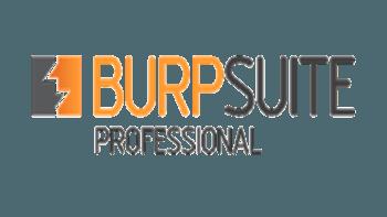 تکنولوژی منطق اسکن پیشرفته BurpSuite