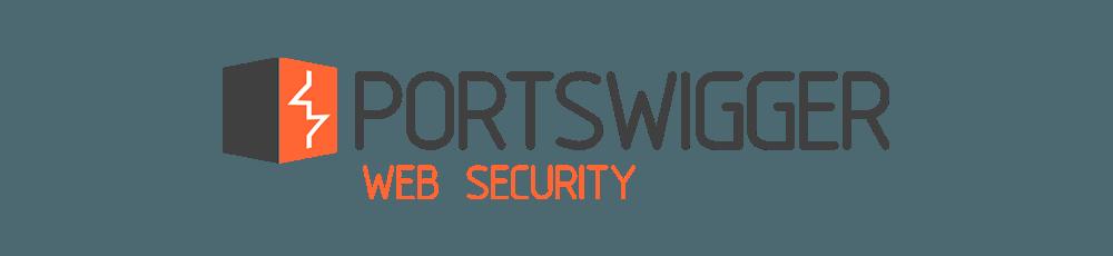 ارائه دقیق آسیب پذیری BurpSuite